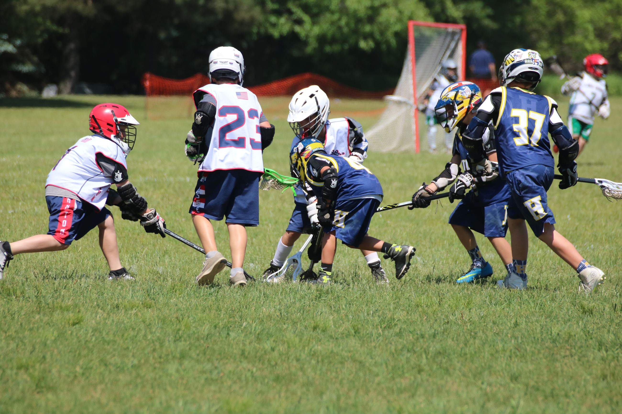 Lacrosse at Canton Sports Center photo